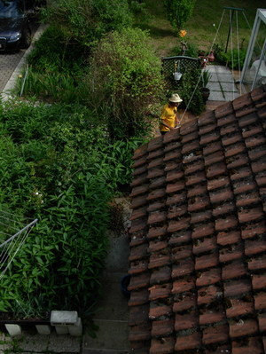 Up on zi roof