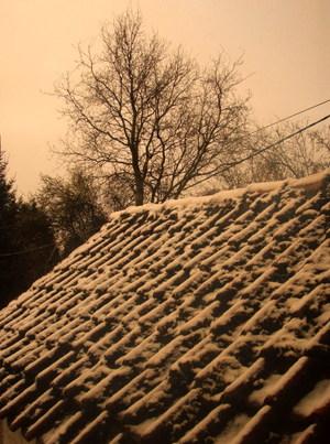 Snow (Kodak style )