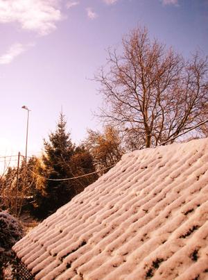 Snow (Kodak style )MkII