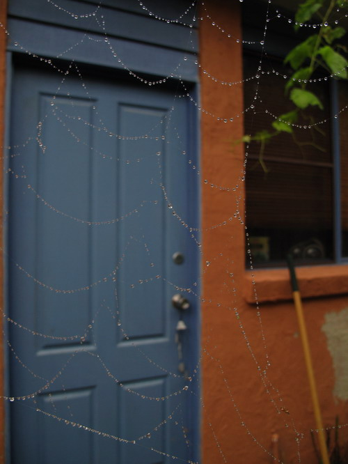 Beaded Spiderweb