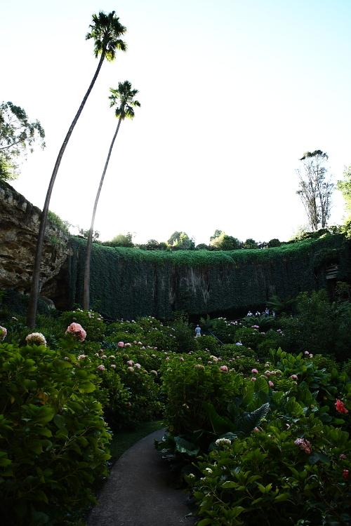 Umpherston Sinkhole, Mt Gambier aka Hanging Garden