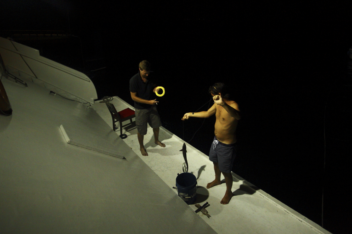 Tommy Hilfiger Surf Shack Maldives Gone Surfing Night fishing