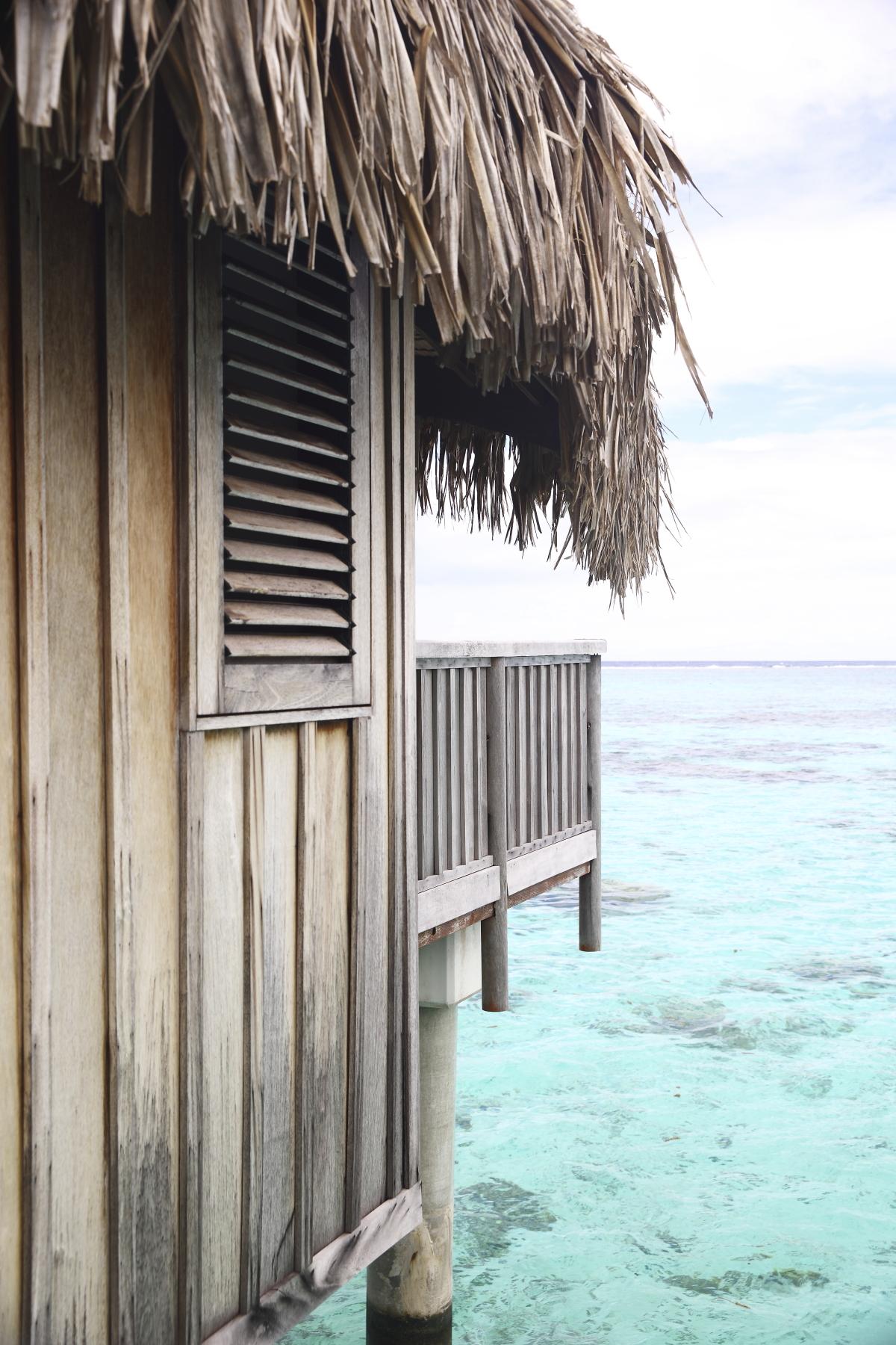 Waking up in an overwater bungalow - Sofitel Tahiti
