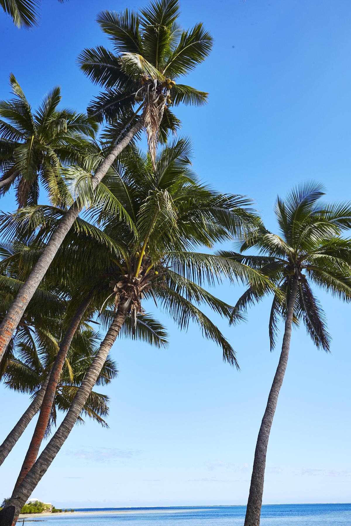 Tropica Island Resort, Malolo Island, Fiji