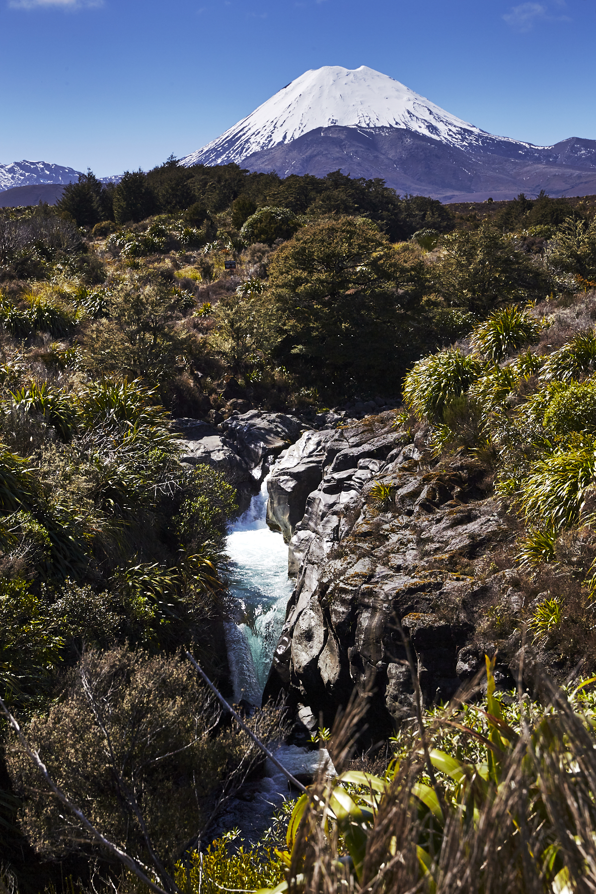 Drive to Taupo from Tongariro