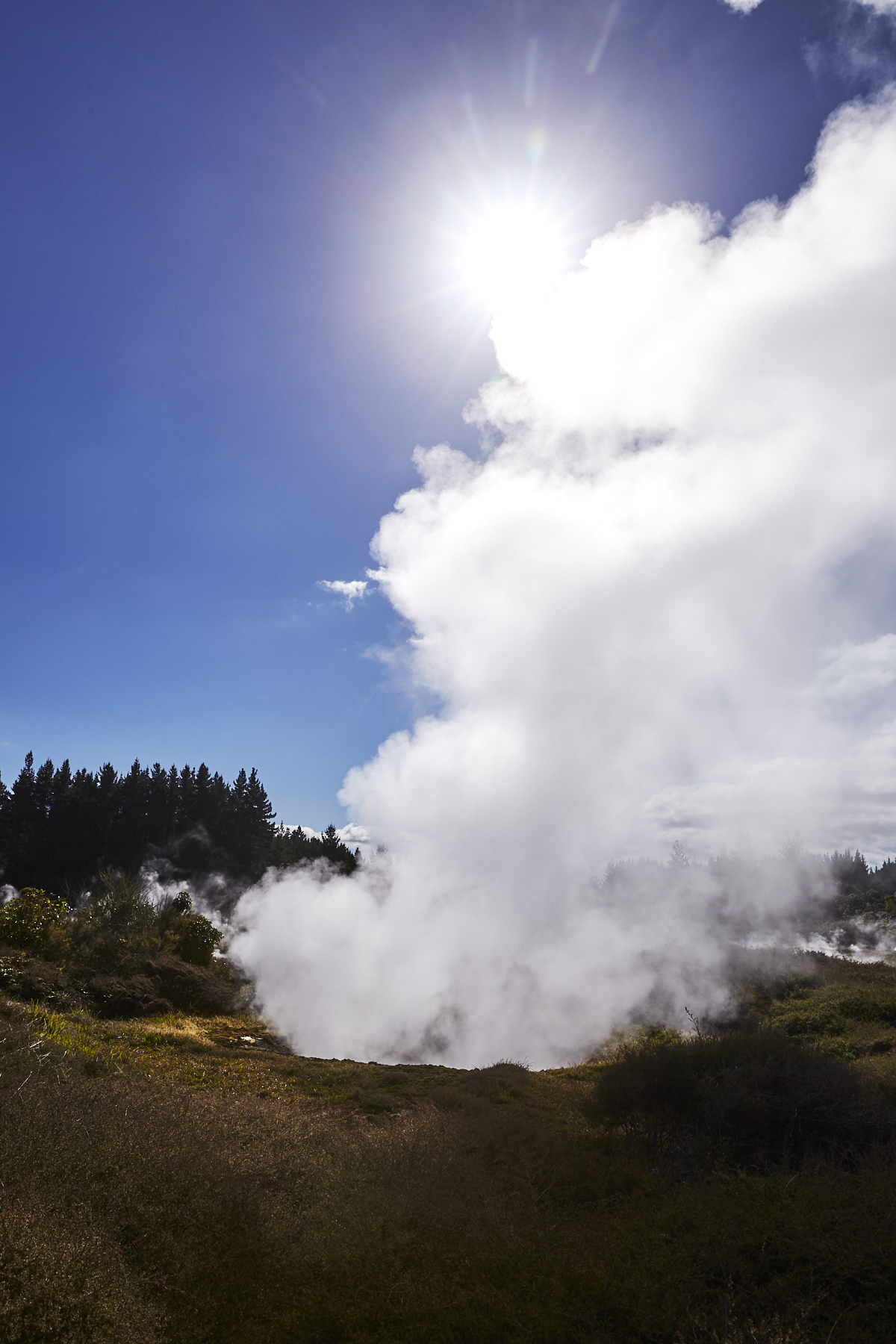 Craters of the moon landscape, Taupo, New Zealand