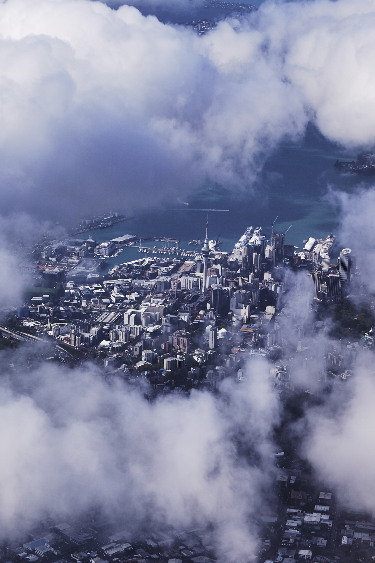 Sydney > Auckland QF143