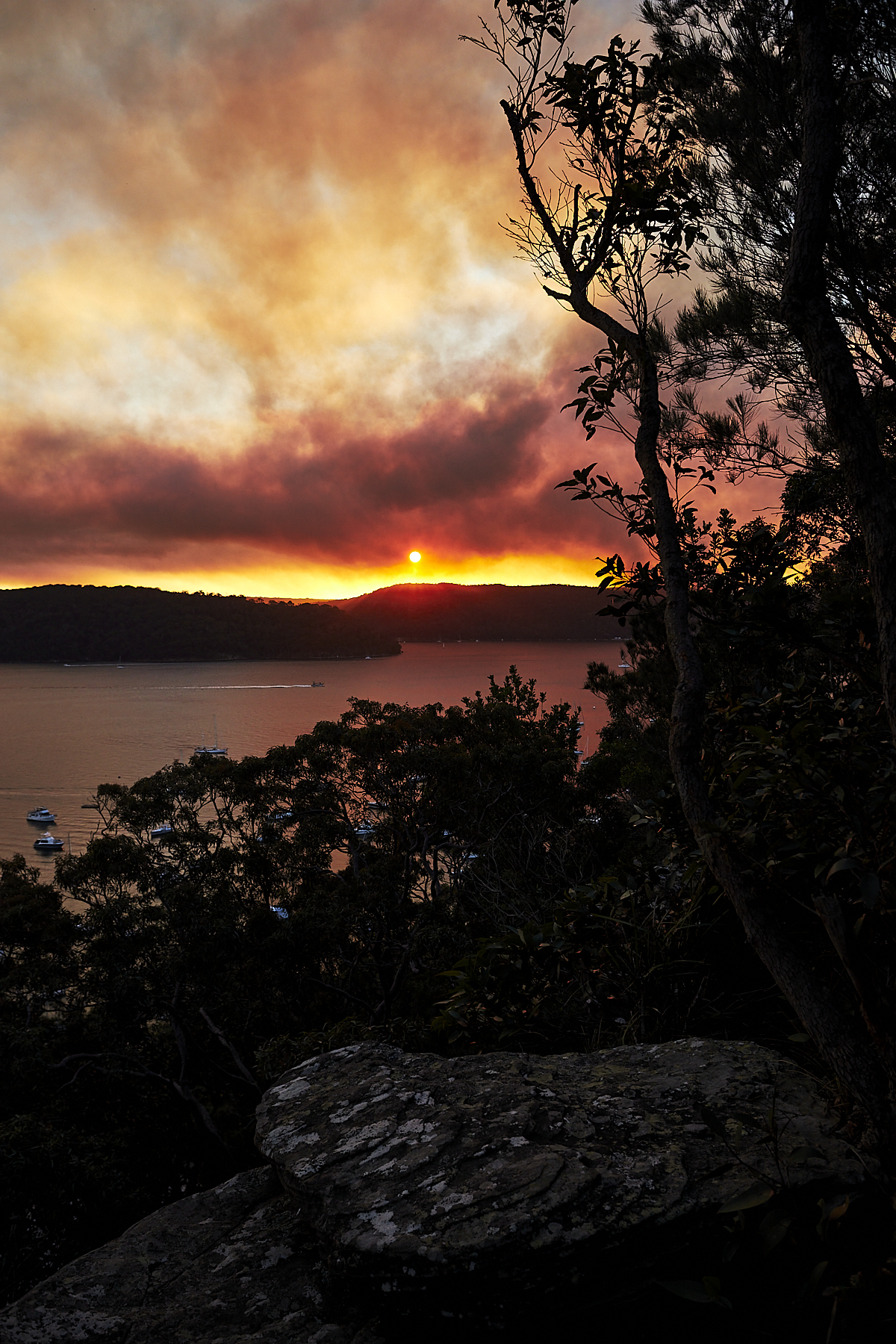 Back Burning in Ku-ring-gai National Park in the middle of Winter